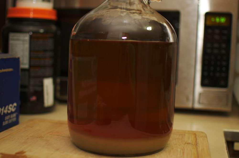 fermenter clarity