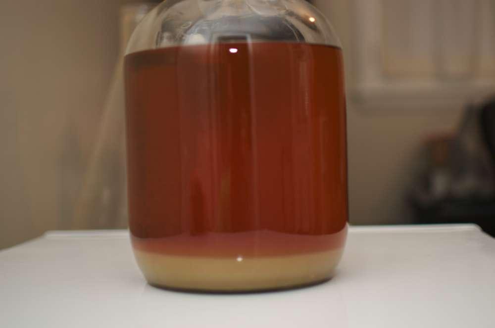 Batch 2 Fermenter